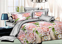 Двуспальный комплект постельного белья евро 200*220 хлопок  (6422) TM KRISPOL Украина