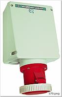 Wl179306 Силова розетка настінна ввід зверху (1хМ50 та 1хМ20) та знизу (2хМ40), 3 пол.(2п.+з) 125 А 230 В