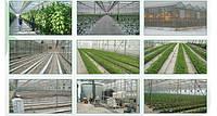 Базовые аксессуары для тепличного выращивания продуктов