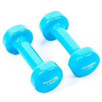 Гантели для фитнеса виниловые IronMaster(2*1,5кг)