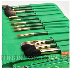 Набор профессиональных кистей Z'OREYA 12 шт в чехле (Зеленый), фото 2