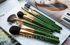 Набор профессиональных кистей Z'OREYA 12 шт в чехле (Зеленый), фото 3