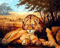 Набор для рисования 40×50 см. Львиная идиллия