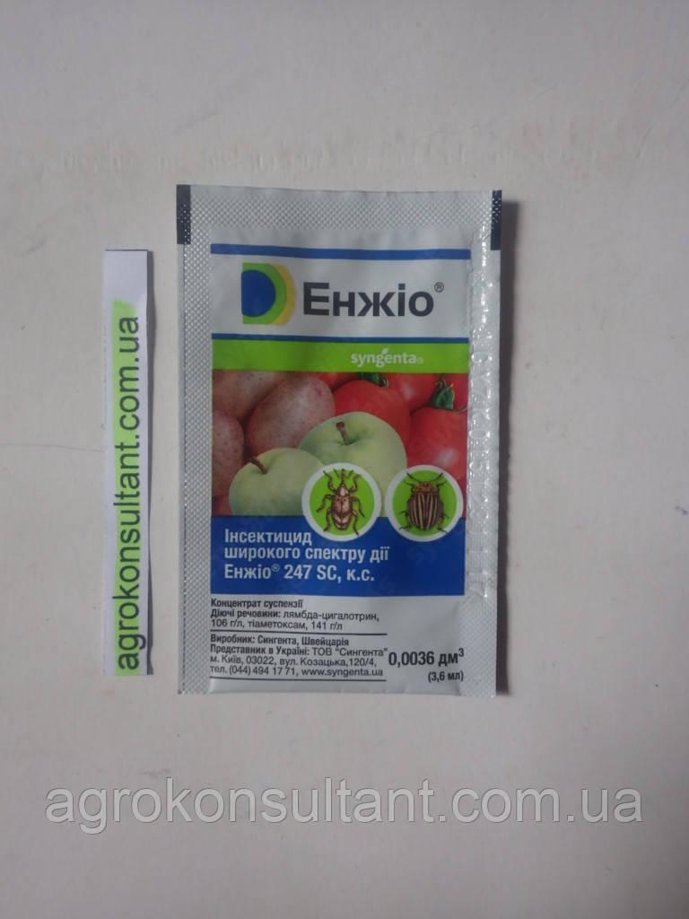 Инсектицид широкого спектра действия — Энжио (3,6 мл) Syngenta, защита яблони, томатов, лука