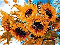 Картины по номерам 30×40 см. Цветы солнца