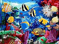 Картина по номерам 30×40 см. Тропические рыбы