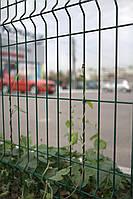 Секционный забор (3d забор) 2030х2500