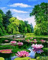 Картины по номерам 40×50 см. Пейзаж с кувшинками