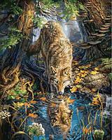 Картины по номерам 40×50 см. Волк в дикой природе