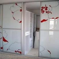 Шкафы-купе с рисунком в Киеве, шкафы купе на заказ с рисунком Киев