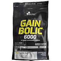 Gain Bolic 6000 1 кг (гейнер), фото 1