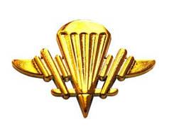 Эмблема аэромобильных войск новая, золото