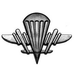 Эмблема аэромобильных войск, новая, хаки