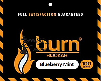 Burn Blueberry Mint (Черника мята) 100 грамм