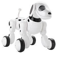 Интерактивная игрушка SUNROZ Smart Robot Dog робот-собака на р/у Белый (SUN0899)