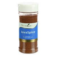 Пищевая добавка для поддержания пищеварения JuvaSpice 113г