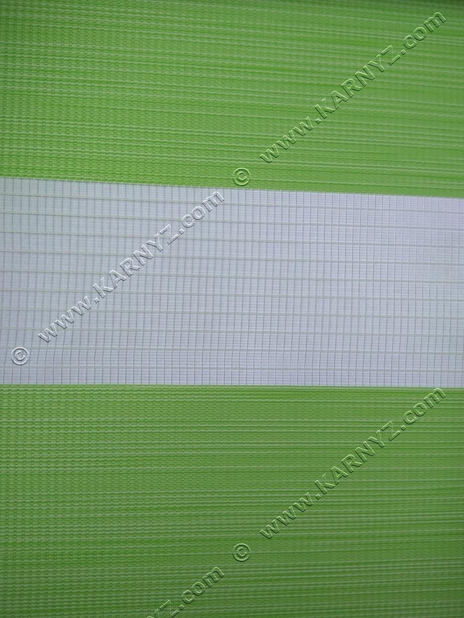 Рулонні штори День-Ніч Венера A-674 фісташковий