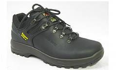 Чоловічі черевики зимові високі Red Rock 10087
