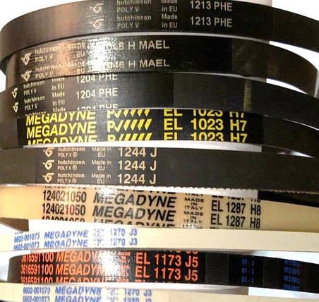 Ремень для стиральной машины 1105 J4 EL white (Megadyne), фото 2