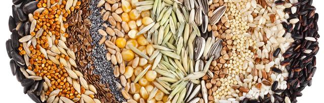 Количество семян в 1г (обновляется)