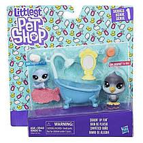 Набор чудесные приключения Ванная комната Hasbro C0046