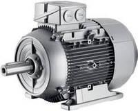 1LE1002-1CC22-2AA4-Z D22 Электродвигатель SIEMENS асинхронный общепромышленный 4 кВт - 1000 об/мин