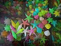 Светящиеся ракушки, звезды для декора аквариумов, квартиры, сада