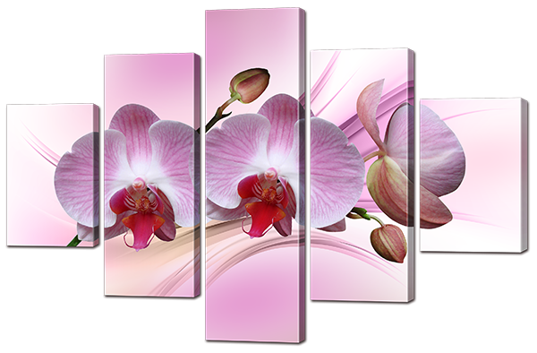 Модульная картина Ветка орхидеи 108* 70 см Код: w8829