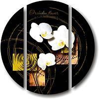 "Модульная картина ""Белые орхидеи на черном фоне""  (диаметр 900 мм)  [3 модуля]"