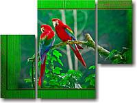"Модульная картина ""Два попугая""  (850х1140 мм)  [3 модуля]"