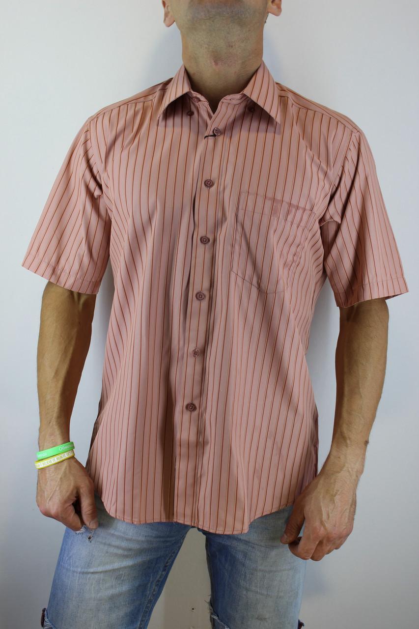 495b712c5a0 Рубашка мужская персиковая - ОПТ И РОЗНИЦА ПО НИЗКИМ ЦЕНАМ в Павлограде