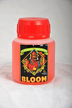 Advanced Nutrients pH Perfect Bloom 100 мл
