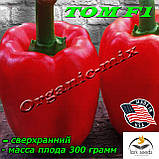ТОМ F1 / ТОМ F1, семена красного, раннего кубовидного перца, пакет 500 семян ТМ Lark Seeds (США), фото 2