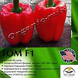 ТОМ F1 / ТОМ F1, семена красного, раннего кубовидного перца, пакет 500 семян ТМ Lark Seeds (США), фото 3