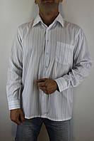 Рубашка мужская Flourish белая