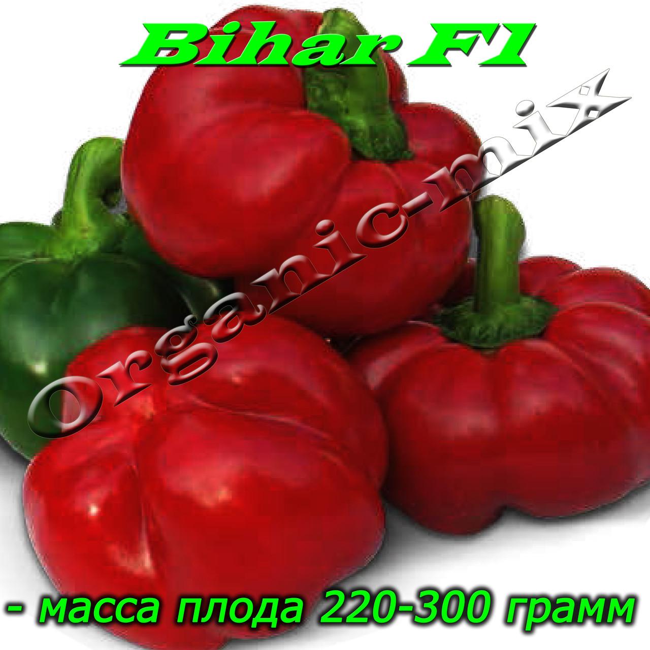 Перец ротунда БИХАР F1 / BIHAR F1, проф. пакет 500 семян ТМ Lark Seeds (США)