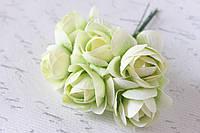 Декоративные цветы камелии диаметр 5 бело-зеленого цвета