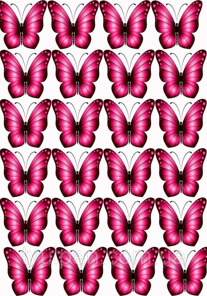 Вафельная картинка бабочки красные