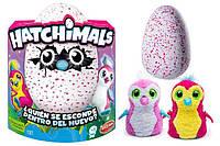 Интерактивная игрушка Пингвина Пенгуалас в яйце - Hatchimals Pengualas