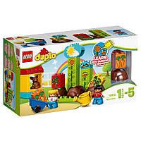 Конструктор LEGO DUPLO Мой первый сад (10819)