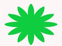 Красители пищевые сухие (Индия) Зелёное яблоко 10г.