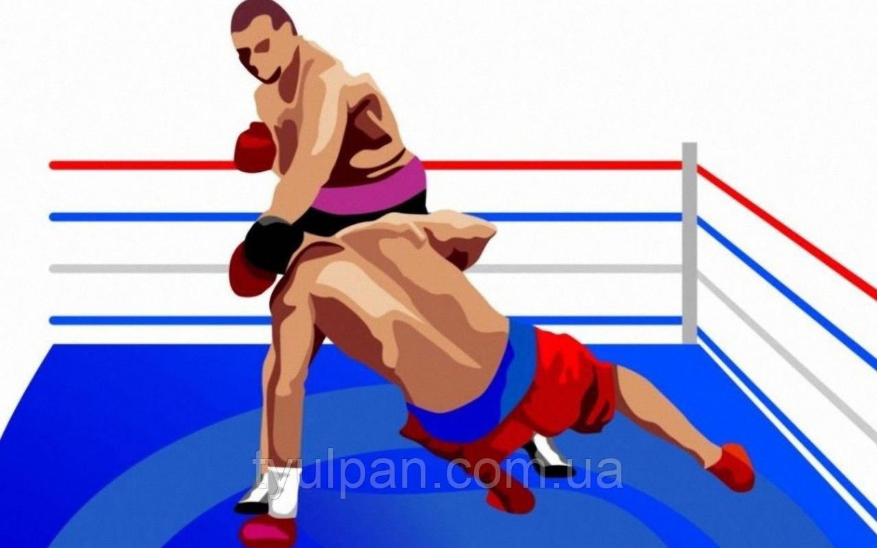 Вафельная картинка на торт спорт бокс