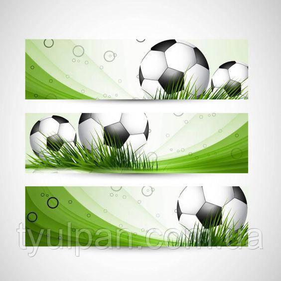 Вафельная картинка на торт спорт футбол 12