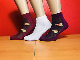 Носки женские летние хлопок сетка Premium размер 36-40 ассорти
