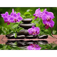 """Картина по номерам """"Лиловые орхидеи"""" 40х50см, С Коробкой"""