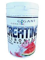 Креатин Моногидрат Creatine Gigant-Genetiс 0.500g