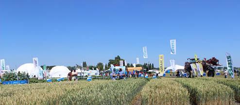 Команда «Агроцент «Подилля» посетила мероприятие «International Field Days Ukraine | Международные дни поля в Украине» 2018