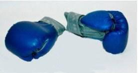 Боксерские перчатки кожзам 8 унций на липучке. Для детей от 10 лет.