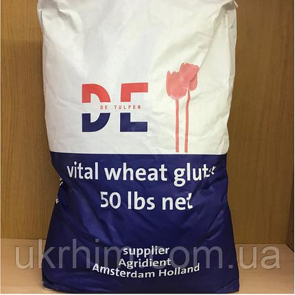 Клейковина (глютен пшеничный сухой), фото 2