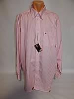 33214c961da Мужская рубашка с длинным рукавом Casa Moda 116ДР р.58